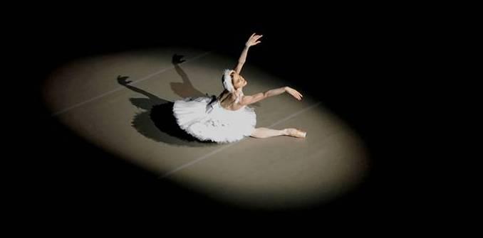Dying Swan Sophie-Harris-Taylor2