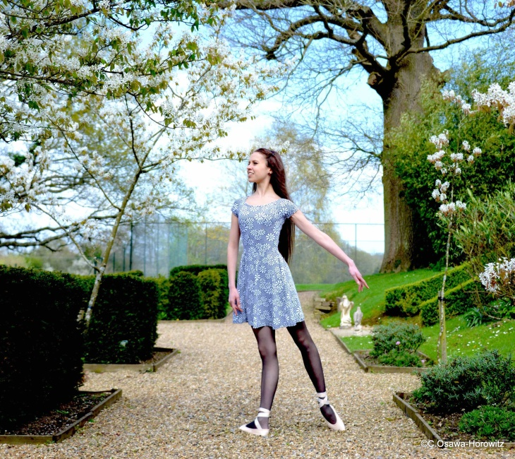 Spring at Blackbrook House